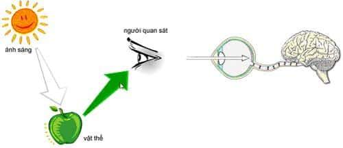 Thiết kế chiếu sáng Besun giảm thiểu ánh sáng xanh