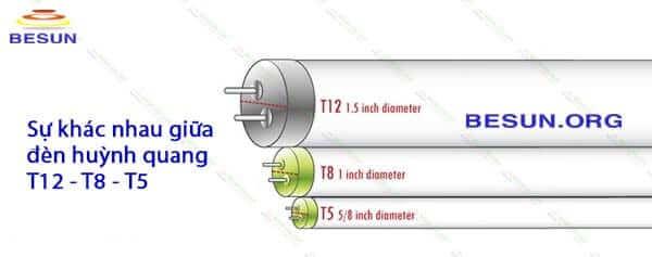 Sự khác nhau giữa đèn tuýp t5 & đèn tuýp T8, T12